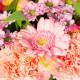 brassée de fleurs été