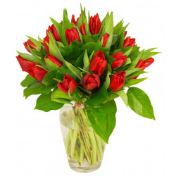 Bouquet de tulipes rouge