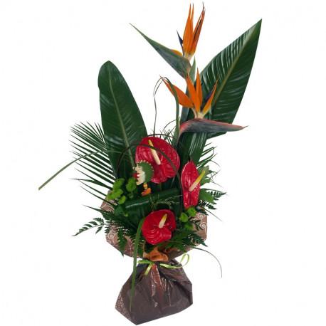 Bouquet des îles