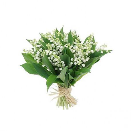 Bouquet de 20 brins de Muguet