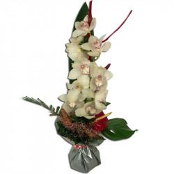 Bouquet Hauteur Orchidée Cymbidium