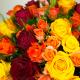 Exhubérance de Roses