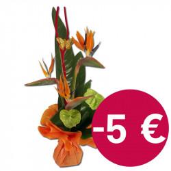 Bouquet d'Anthuriums et strélizias