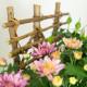 Souvenir - coupe de plantes deuil