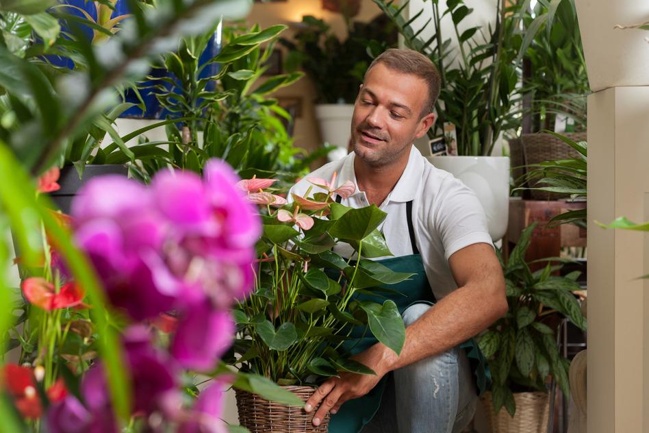 Livraison de fleurs domicile fleuriste en ligne plus for Livraison bouquet de fleurs a domicile