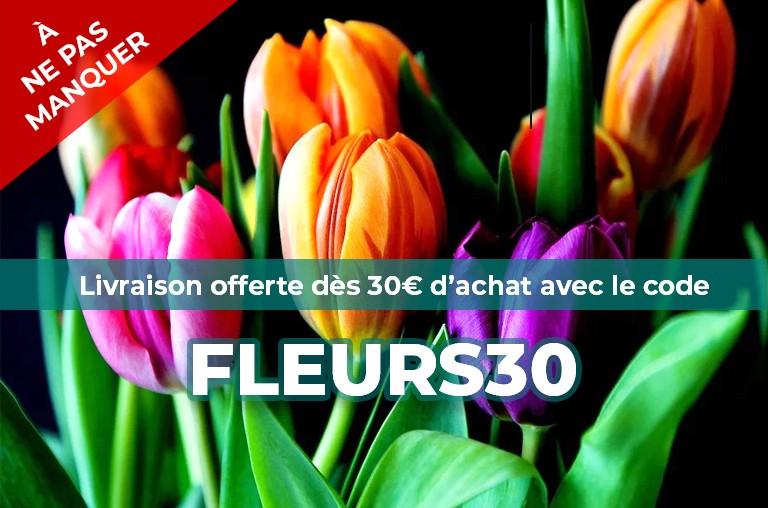 Profitez d'une livraison gratuite dès 30€ d'achat !