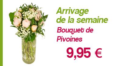 Pivoines promo