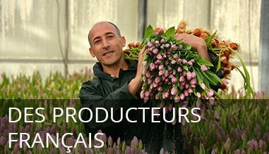 Producteurs français